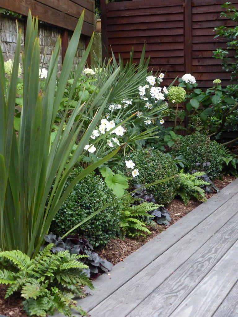 P1010862 in 2020 | Sloped garden, Front garden design ...