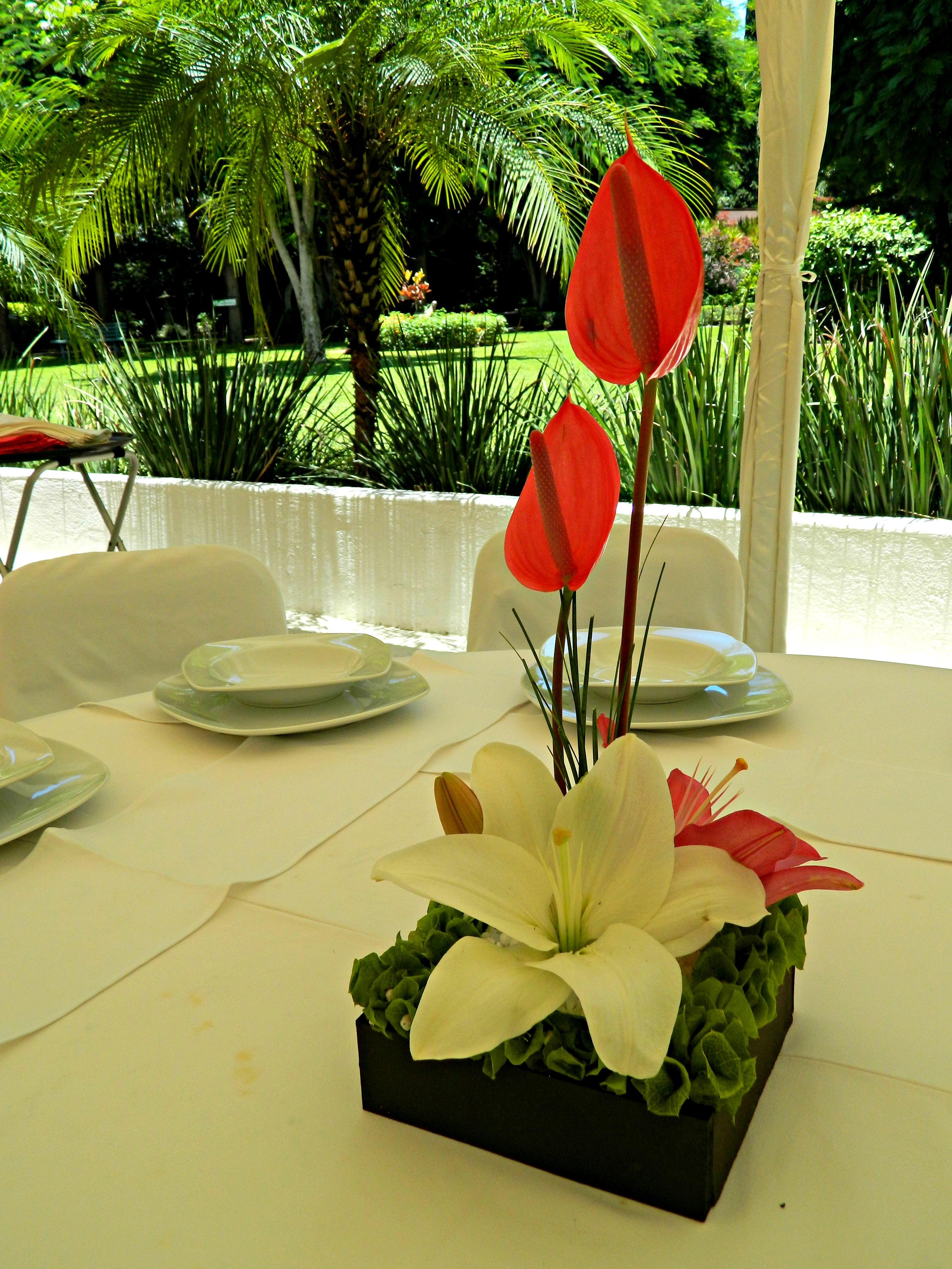 Centro De Mesa Boda Flores Www Pavorealdelrincon Com Mx Vases  ~ Centros De Flores Naturales Para Mesas