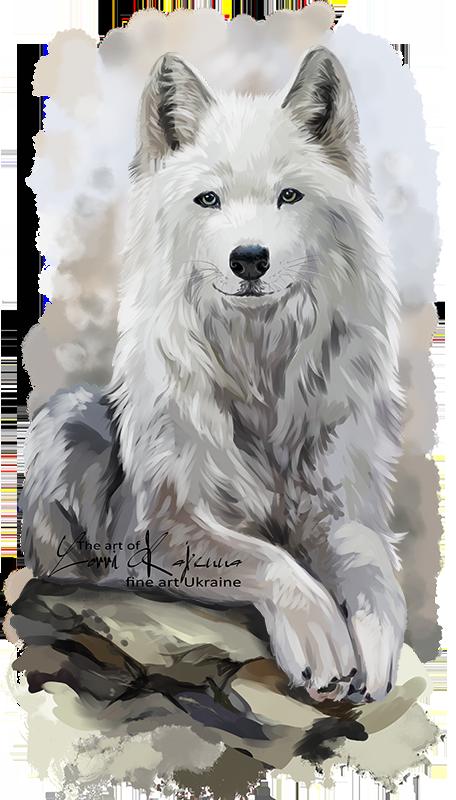 White Wolf By Kajenna Deviantart Com On Deviantart Wolf Art Wolf Photos Wolf Spirit Animal