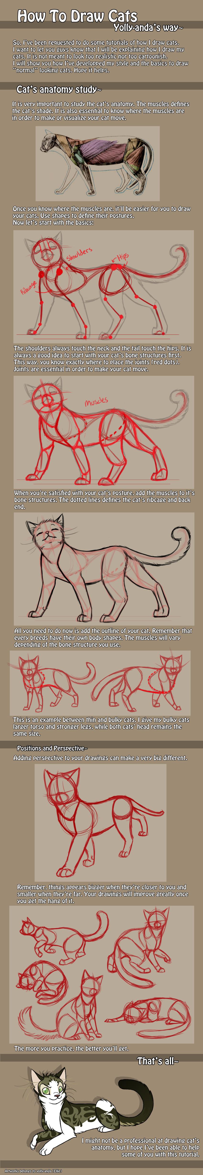 Aprenda a Desenhar #3: Corpo Humano+Perspectiva+Animais   Pinterest ...