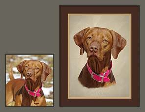 Vizsla submitted photo and final portrait.