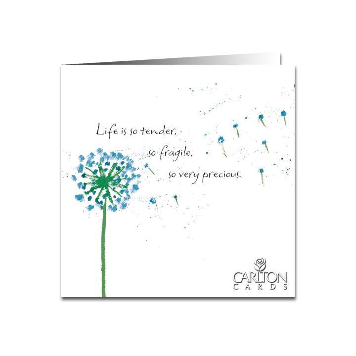 Life is so tender, so fragile, so very precious