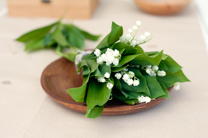 My Favorite Lily of the Valley + video :) // 79 Ideas
