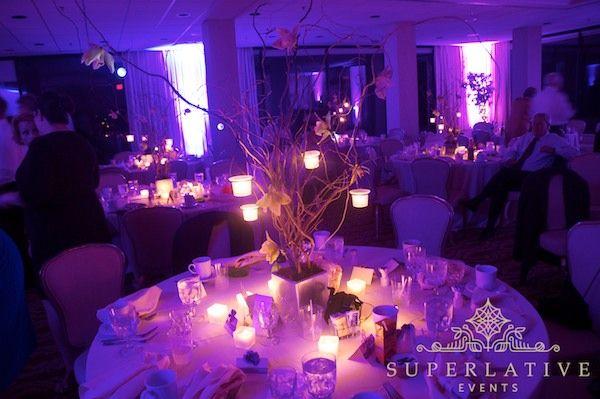 Image Detail For Ft Belvoir Officers Club Wedding Lighting Fairy Berries Purple Hanging