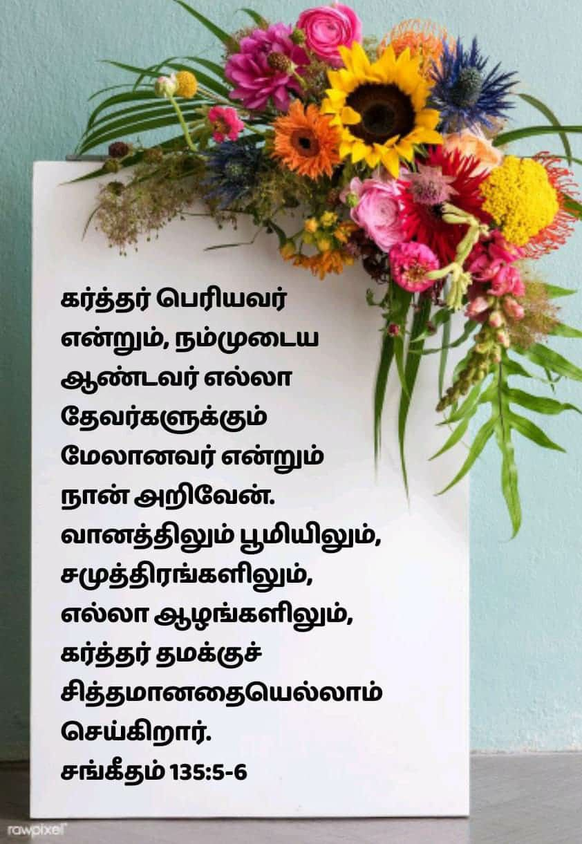 Pin on Bible verses my likes in Tamil