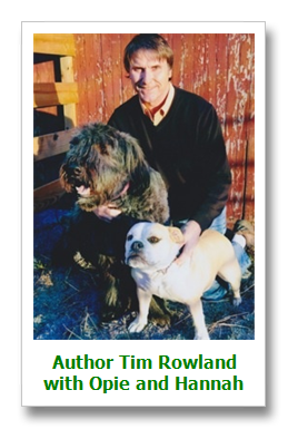Visit with author Tim Rowland as he talks about his writing - http://masoncanyon.blogspot.com/2013/02/on-tour-with-author-tim-rowland.html