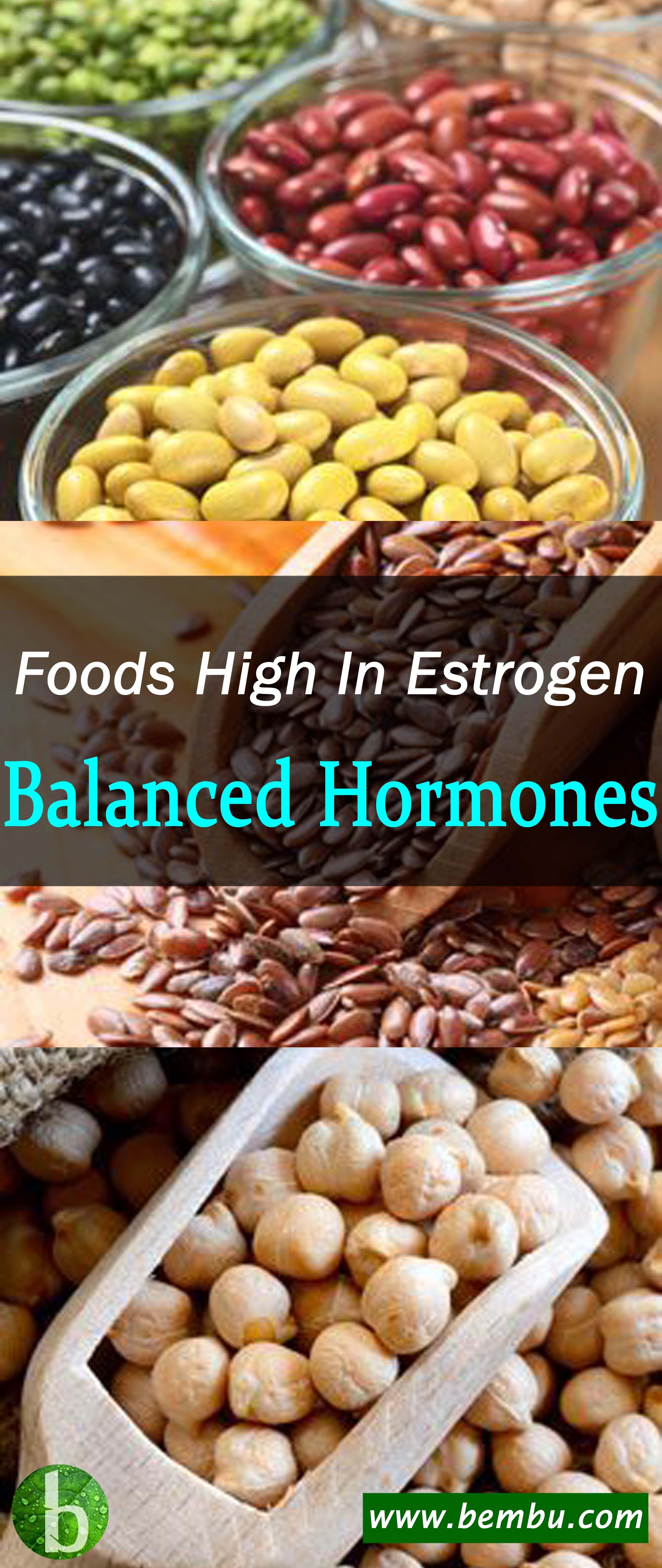 Estrogen rich food guide for boosting low levels