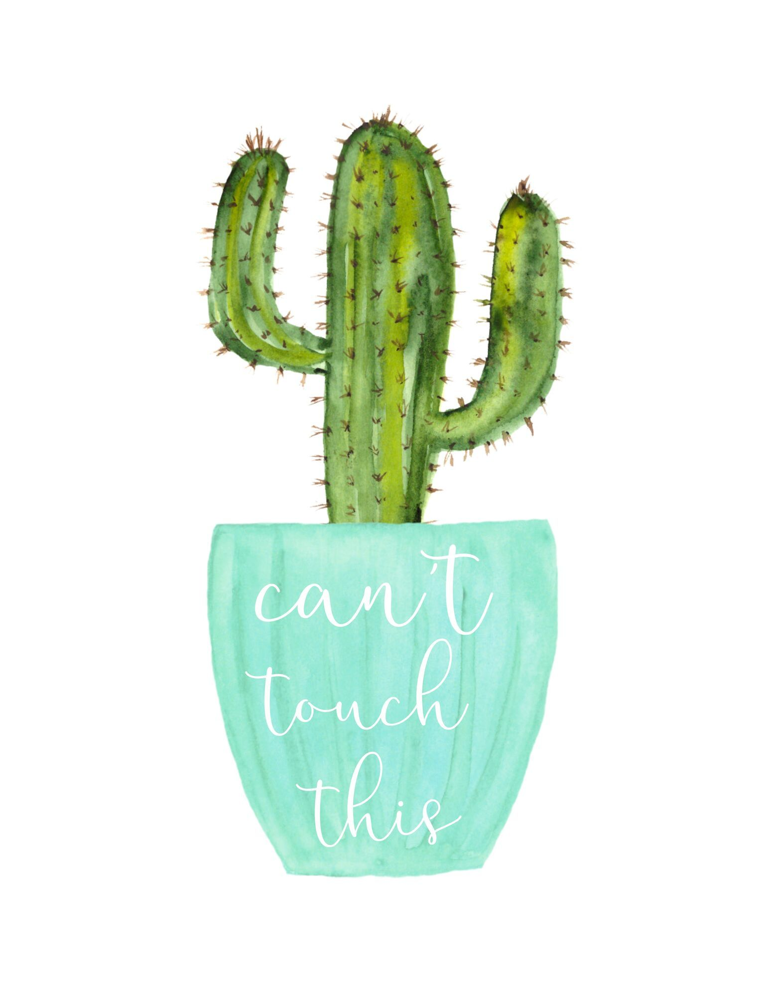Pin By Kaylynne On Cactus Love