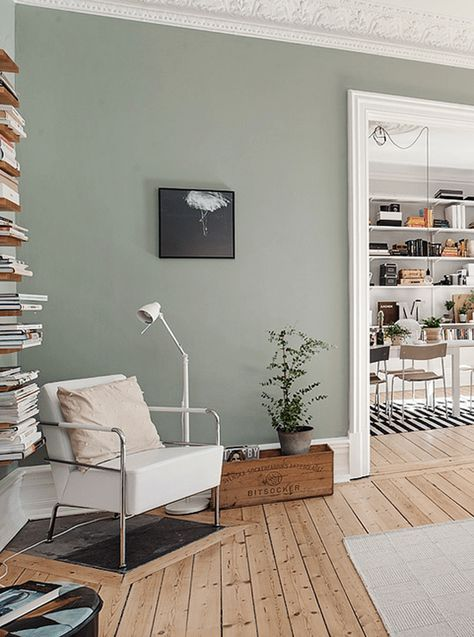 House Living Room With Olive Gray Walls Green