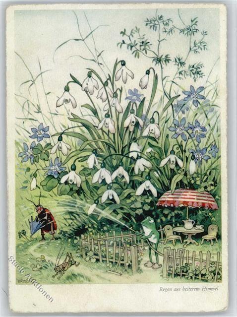 50711371 - Baumgarten, Fritz Frosch, Regen aus heiterem in Sammeln & Seltenes, Ansichtskarten, Motive | eBay