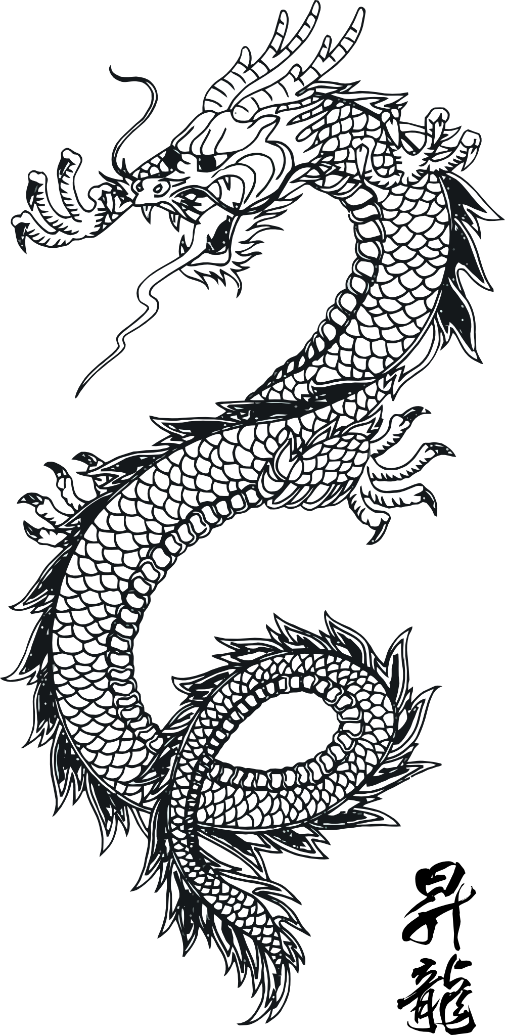 line art traditional chinese dragon scales and pattern without form