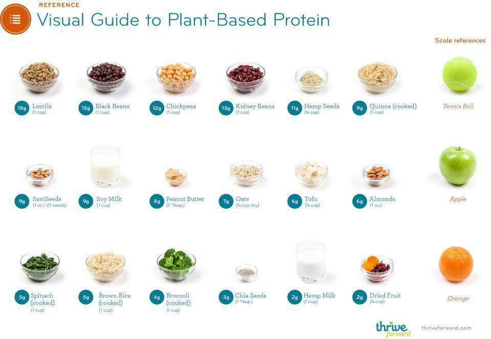 grönsaker med protein
