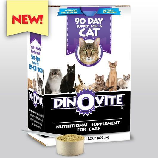 Dinovite For Cats New Formula Cat Nutrition Nutrition Dog