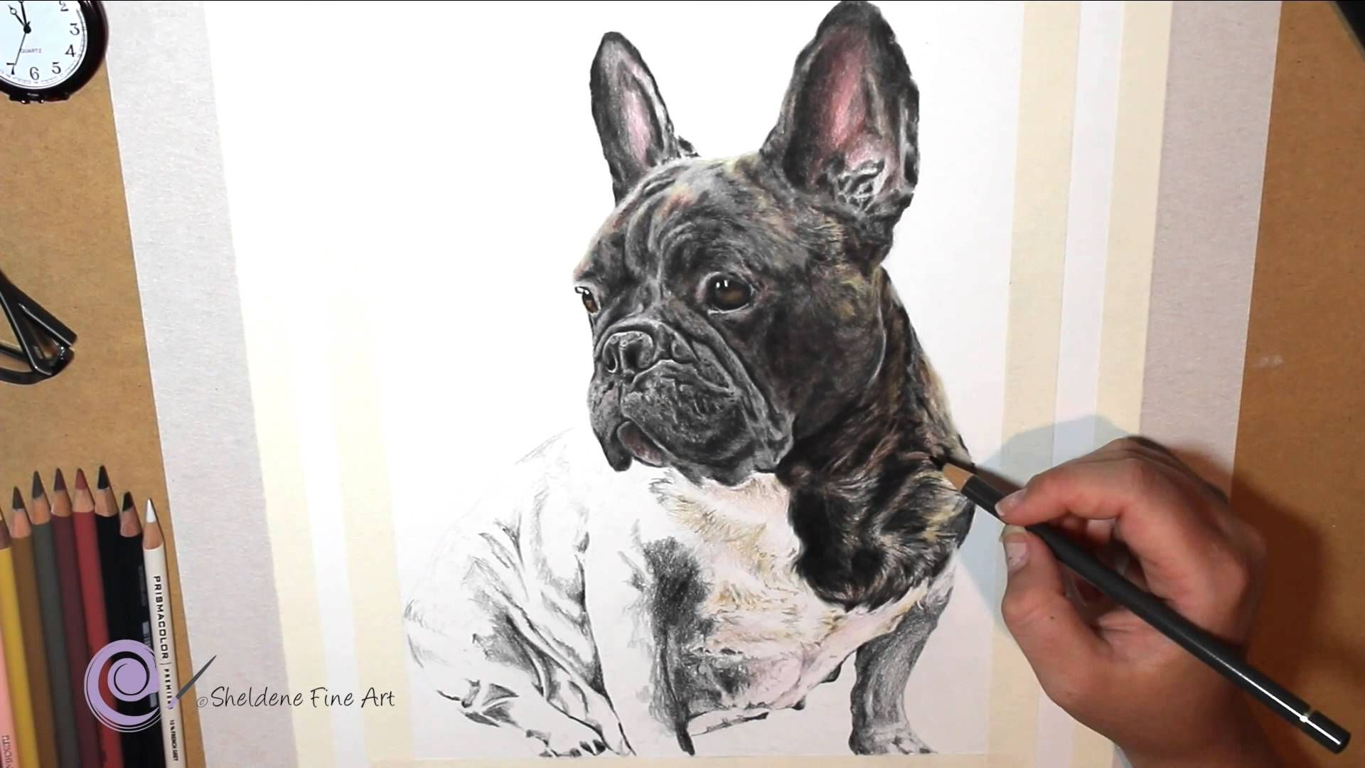 Realistic Colored Pencil Drawing Of A French Bulldog Drawing Dessin
