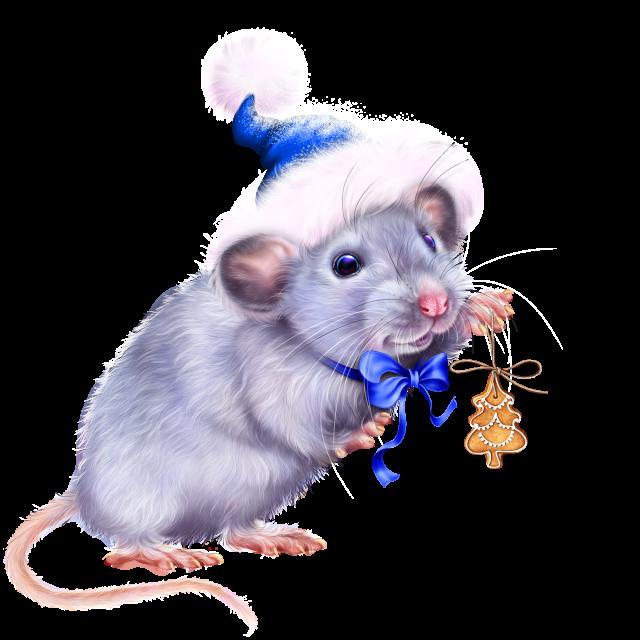 Картинки новогодних мышей, для