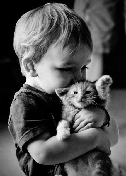 Ahh Cute Kittens Names Baby Katzen Susseste Haustiere Und Haustiere