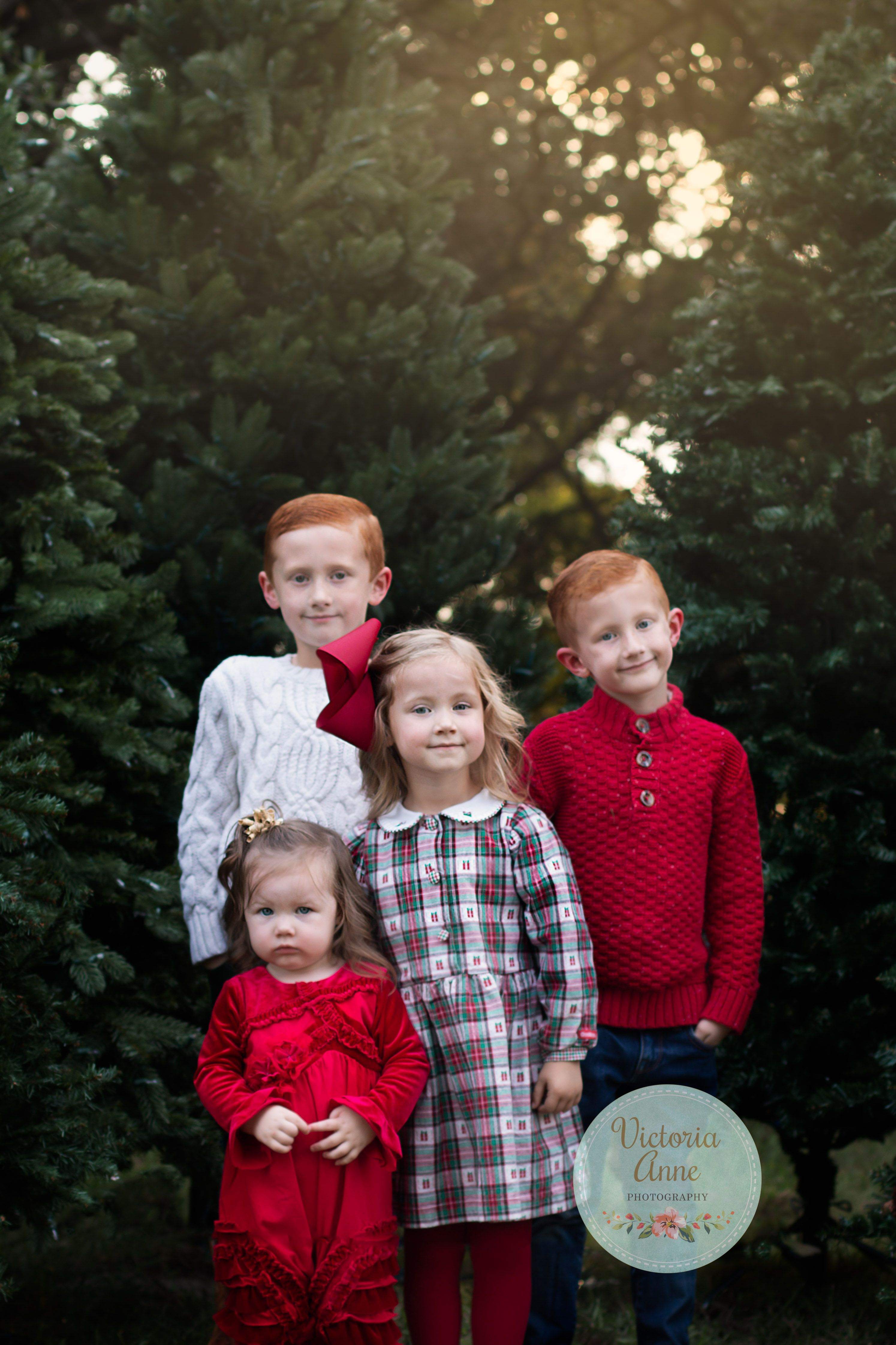 Christmas Card Pictures Christmas Tree Farm Mini Session With Four Sweet Kiddo Christmas Tree Farm Mini Session Tree Farm Mini Session Christmas Card Pictures