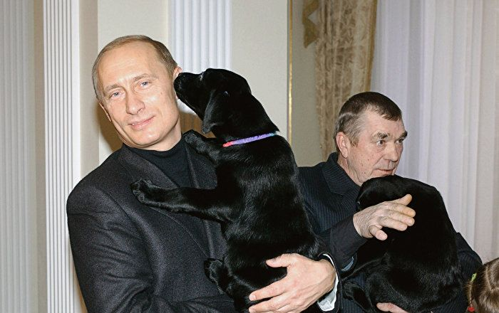 Russian President Vladimir Putin presented an 11-year-old schoolgirl from Kursk Anna Abramova with a Labrador puppy, the press service of the Kursk city assembly said.