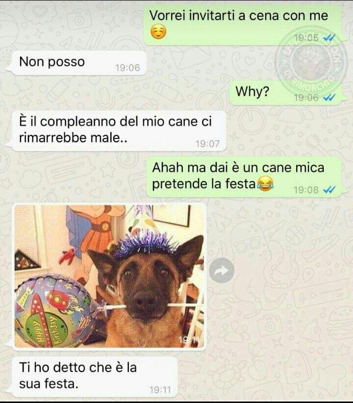 Pin Di Gessica Su Humor Funny Happy Birthday Dog E Happy