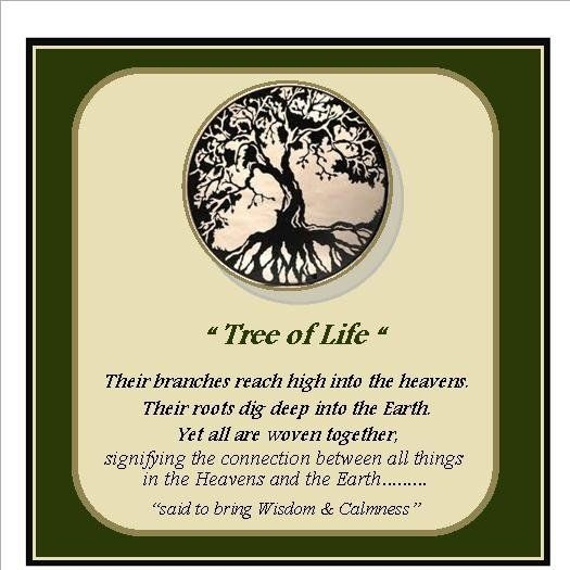 Tree Of Life Means A Lot To Me Holistic Pinterest Tattoo Spiritual And Tatting