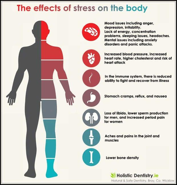 the four main ways stress affect an individuals health Managing stress is a good idea for your overall health, and researchers are currently studying whether managing stress is effective for heart disease a few studies have examined how well treatment or therapies work in reducing the effects of stress on cardiovascular disease.