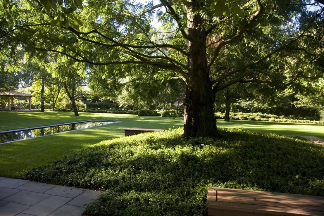 1000  images about tuinen en tuineren on pinterest