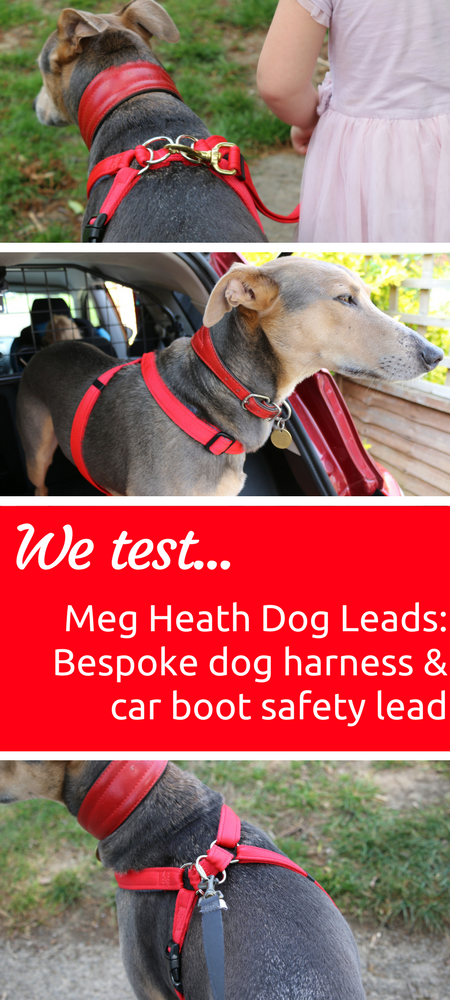 Meg Heath Dog Leads Bespoke dog harness and car boot