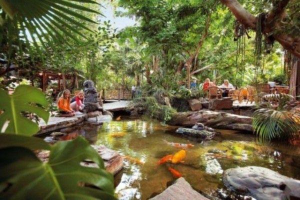 Tropical Garden Ideas tropical garden design using pavers with outdoor dining shade sail gardens photo 321205 Tropical Backyards Ideas Small Tropical Garden Design Beautiful Homes Design