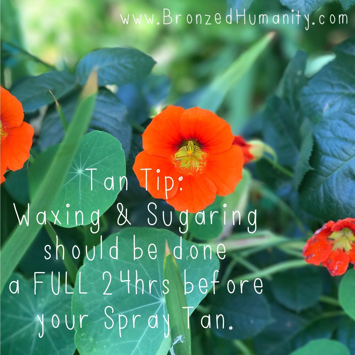 Tan Tip Tuesday Waxing and Sugaring should be done a full hrs