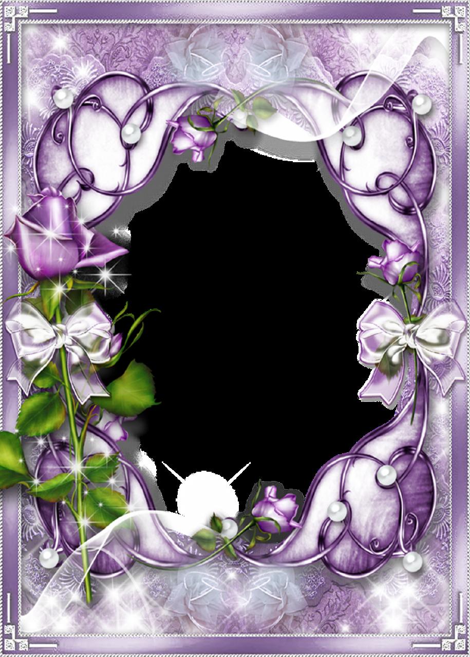 Purple Rose Frame Transparent Purple Fra...