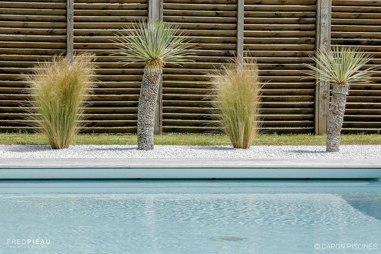 Décoration autour de la piscine ! #Caron #palmiers #jardin #bienetre ...