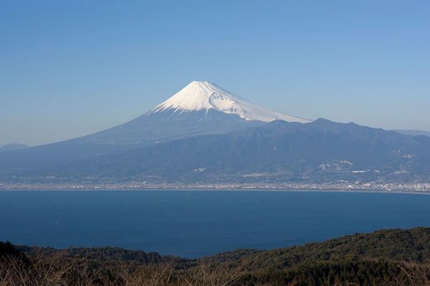 伊豆市 達磨山 富士山 駿河湾
