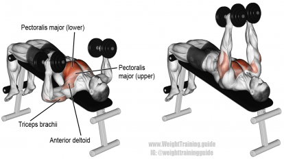 Decline bent-arm barbell pullover exercise | KP work out ...