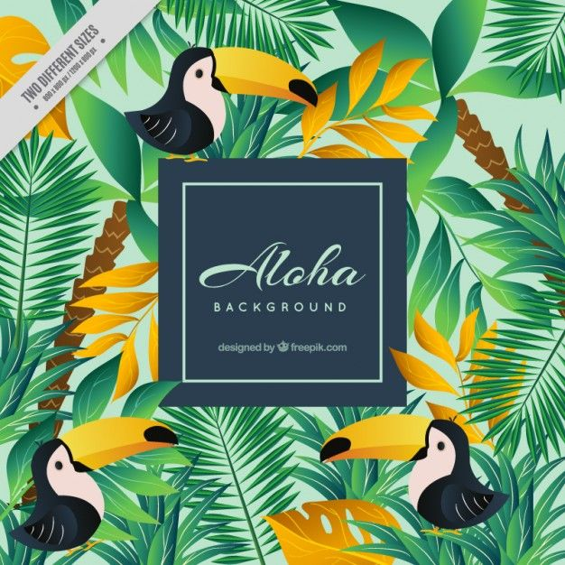 Aloha Background With Toucans Free Vector