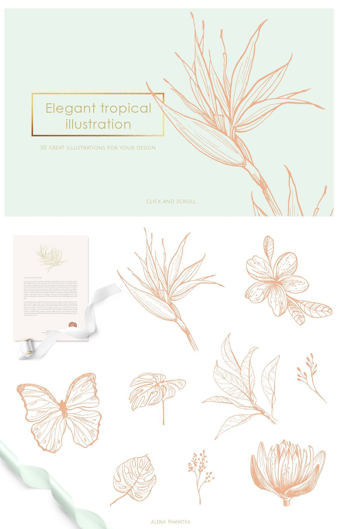 Tropical illustrations and patterns - Illustrations #tropicalpattern