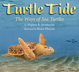Teach with Picture Books: The Secret to Descriptive Writing