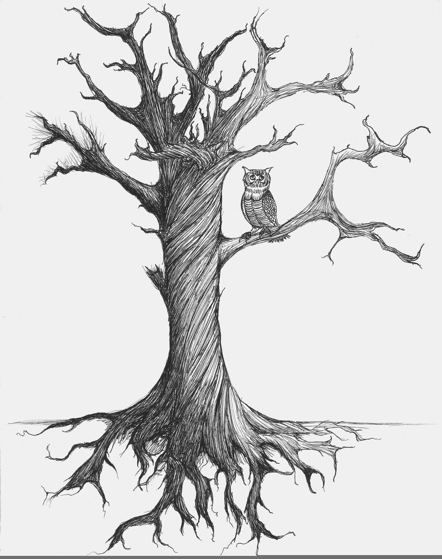 Old Yet Useful Tree By Neongarbage On Deviantart