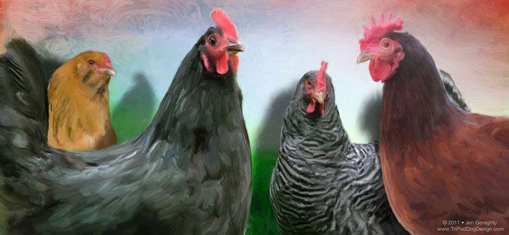 The Ladies  www.TriPodDogDesign.com  Custom chicken art - custom pet portrait • Bird Art and Photography
