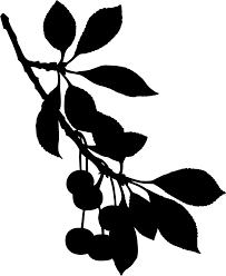 Tree Limb With Leaves Svg Google Search Flowers Leaves Tree