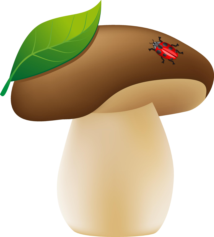 картинка гриб детская