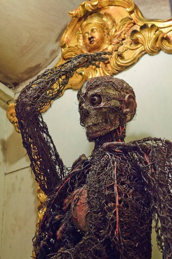 The Prince Of Sansevero S Anatomical Machines Located In The Underground Chamber At The Museum Cappella Sansevero The Machines Were Made By The Doctor Giuseppe