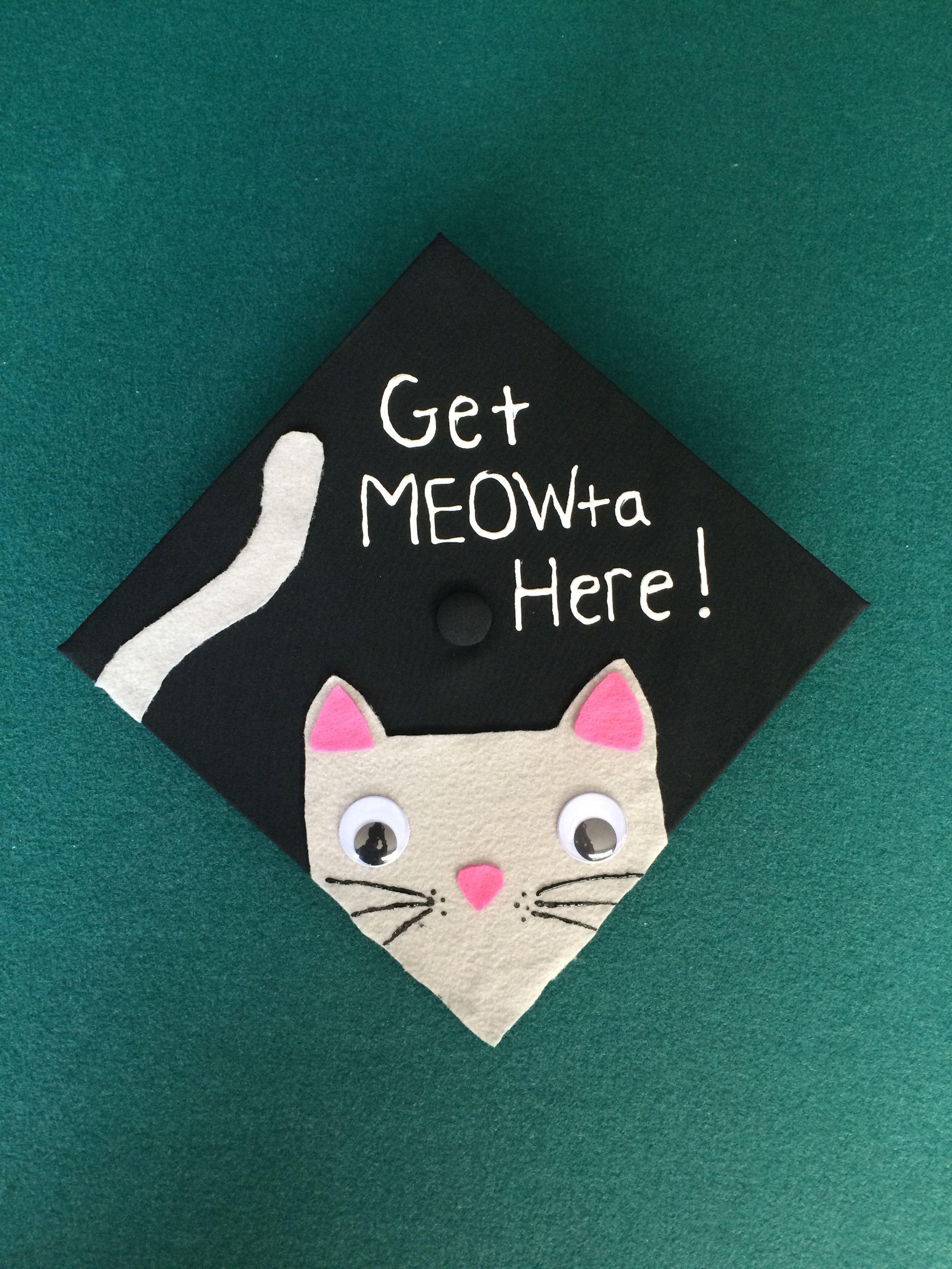 graduation cap meow graduation cats cats graduation cap meow graduation cats