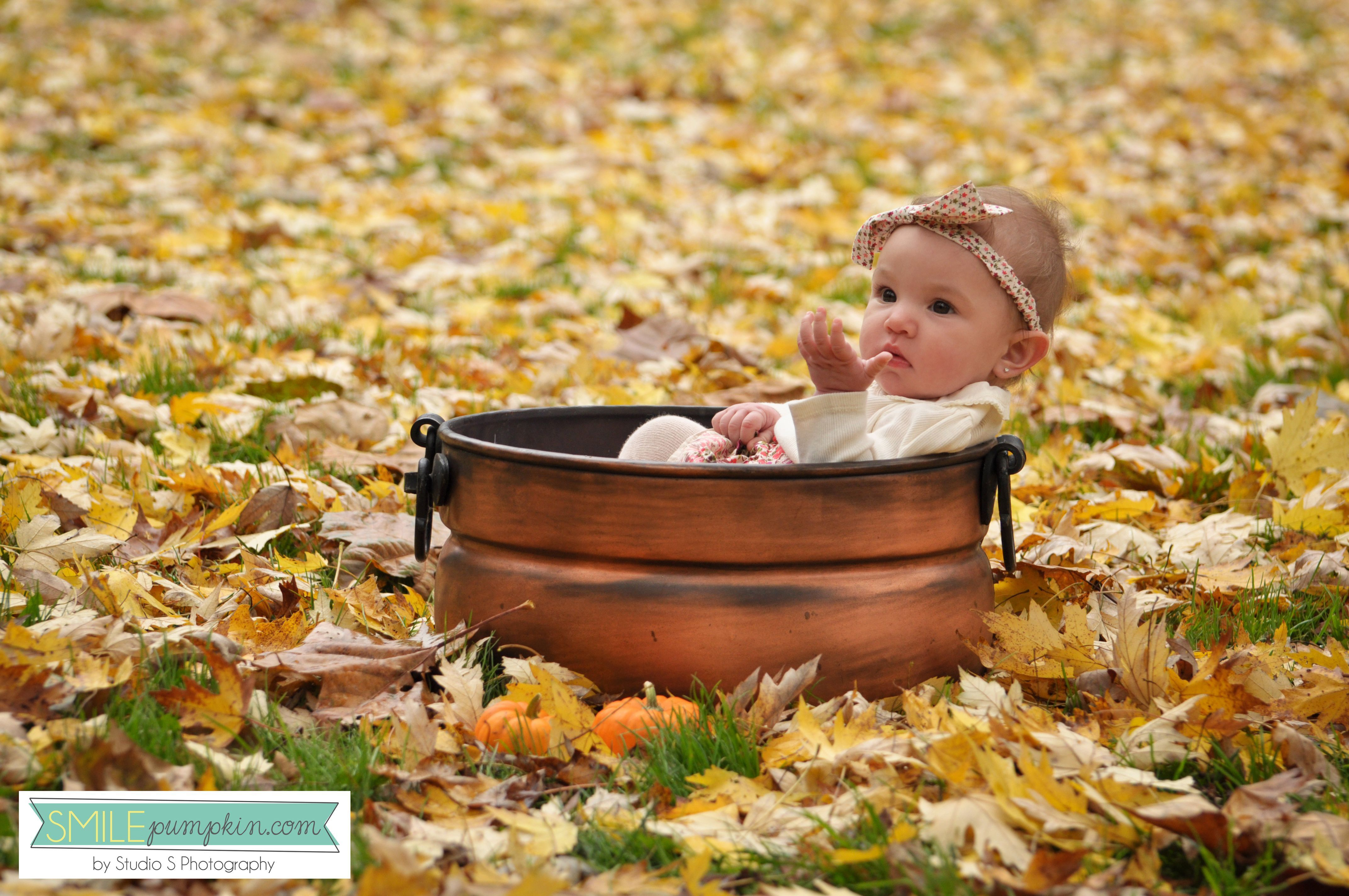 fall baby portrait idea fall baby portrait idea #fallmilkbath