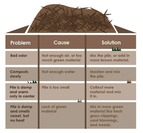 How to Compost | Composting Facts - Make Your Best Home