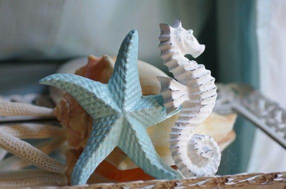 seahorse starfish