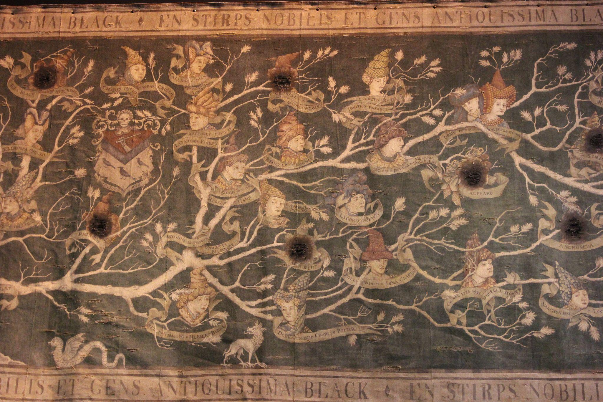 Black Family Tapestry Harry Potter Family Tree Tree Tapestry Harry Potter Movies