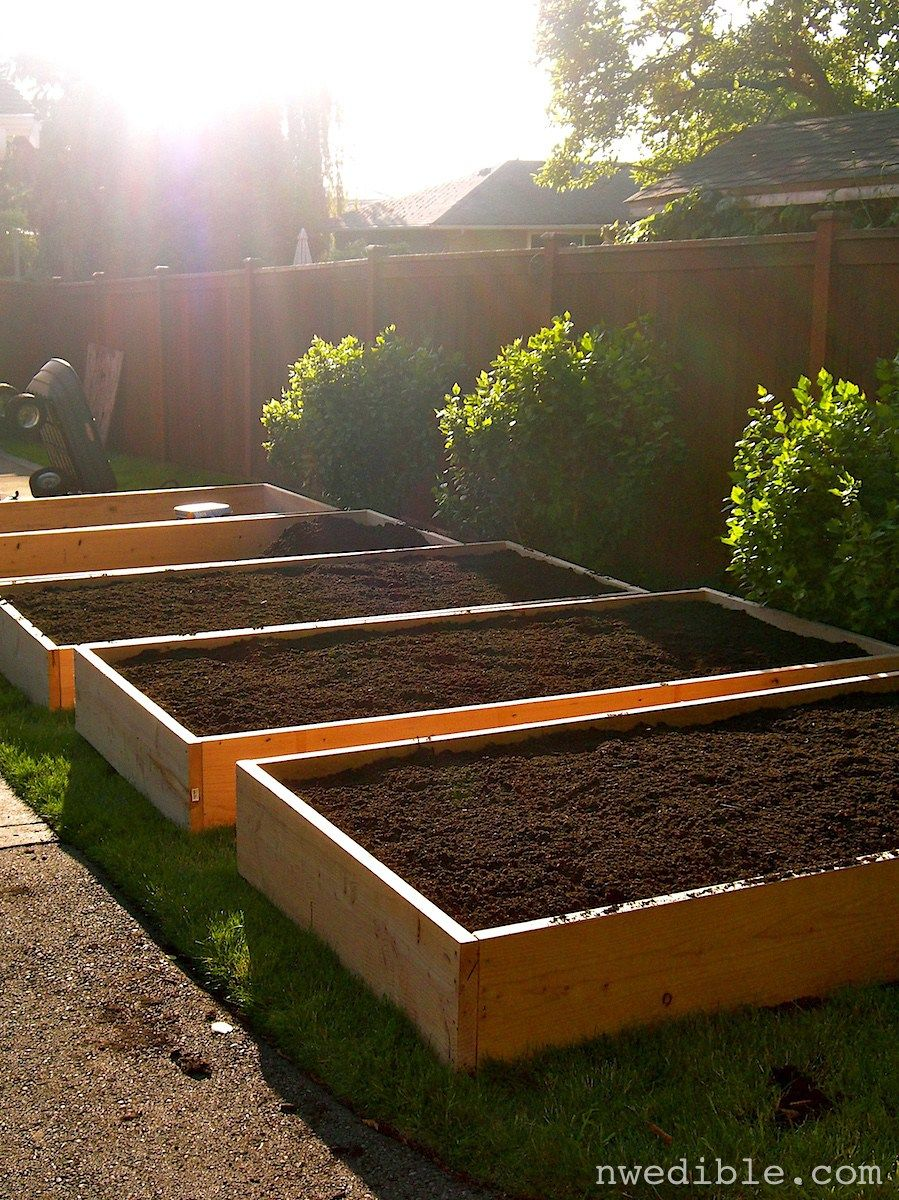 How to begin growing vegetable gardens in raised beds for Small planting bed ideas
