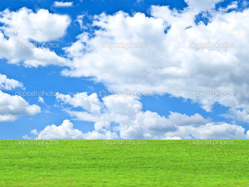 Fotos E Imagenes Cielo Azul Con Nubes: Hermoso Campo Verde Y Cielo Azul