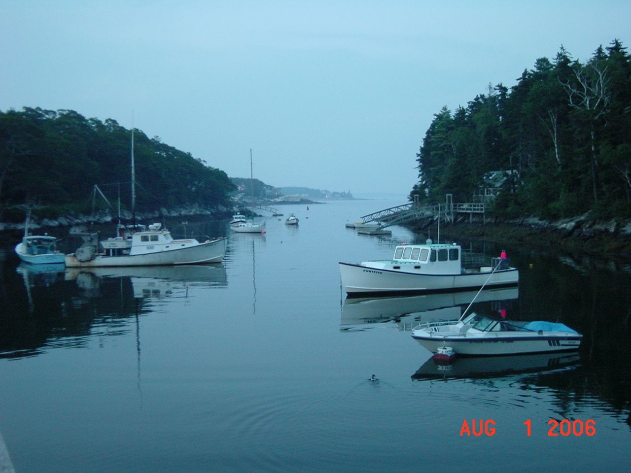 Morning in Maine....