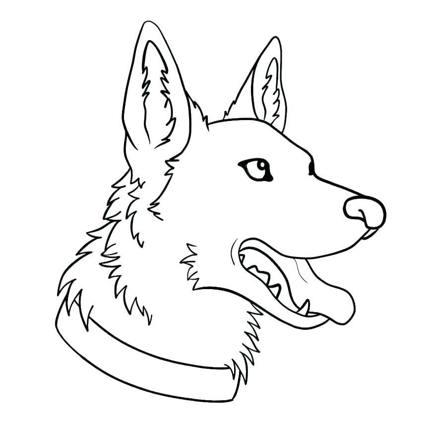 German Shepherd Coloring Pages Best Coloring Pages For Kids German Shepherd Colors Dog Coloring Page Puppy Drawing